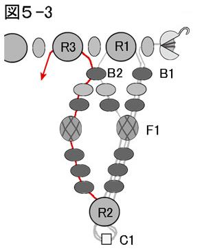 ネッティングを使ったネックレスの作り方:図5-3