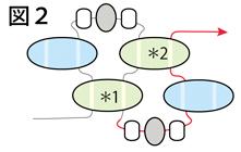 ツインビーズを使ったネックレスの作り方:図2